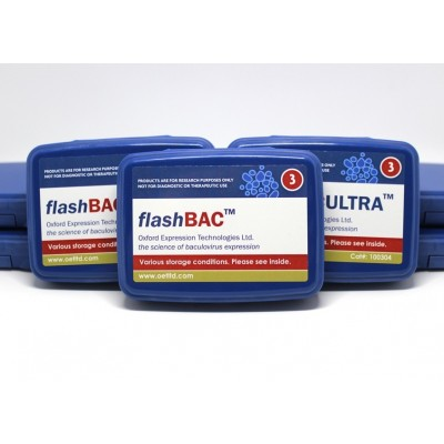 flashBAC selection box 1