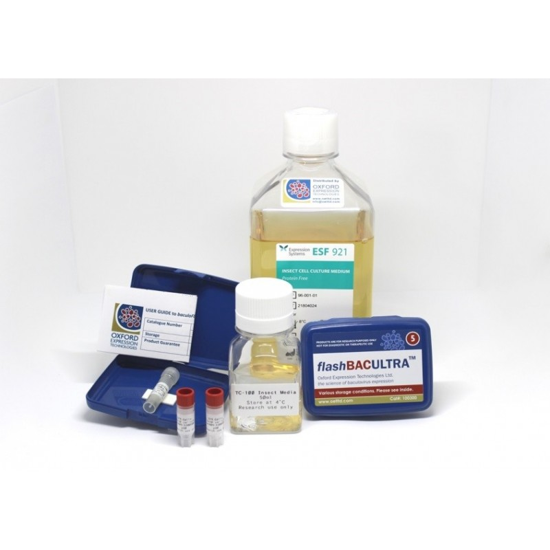 baculoCOMPLETE protein expression kit