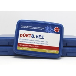 pOET8.VE1 transfer plasmid