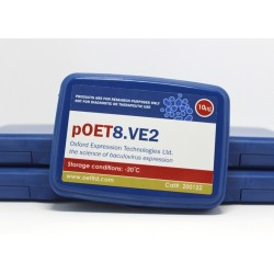 pOET8.VE2 transfer plasmid