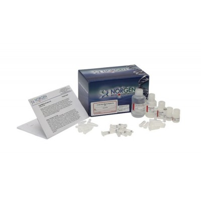 Total RNA Purification Kit