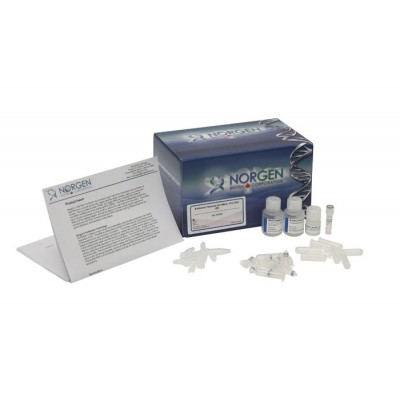 Bacterial Genomic DNA Isolation Kit
